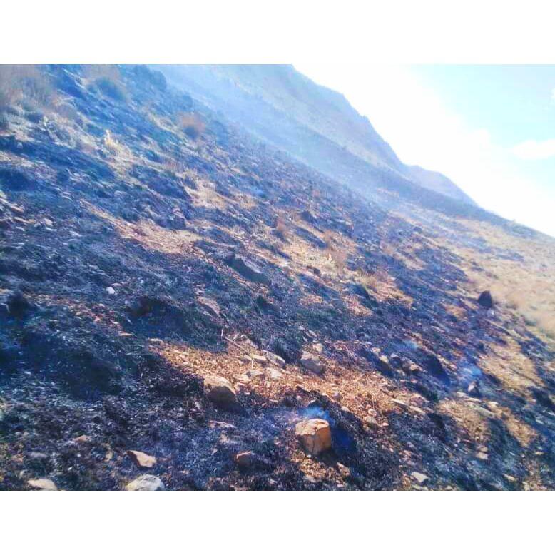 بی احتیاطی گردشگران، آتش به جان ۲ هکتار از مراتع اقلید فارس افکند