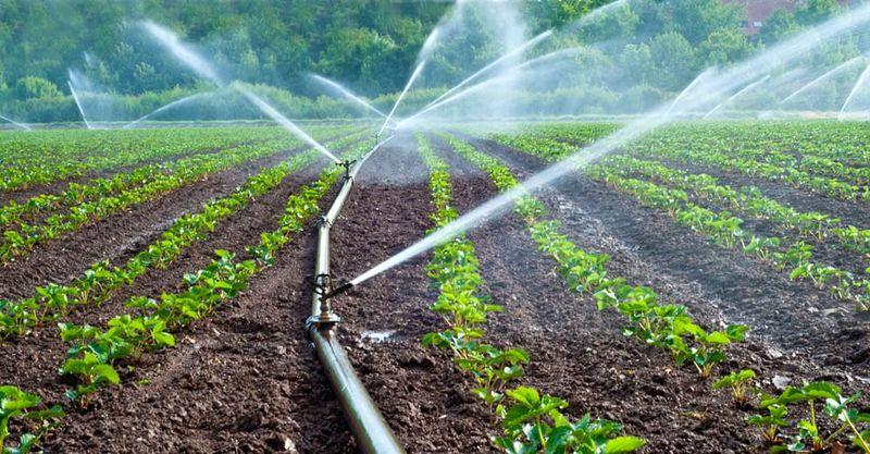اجرای آبیاری نوین در هزار و ۶۳۹ هکتار اراضی کشاورزی اقلید