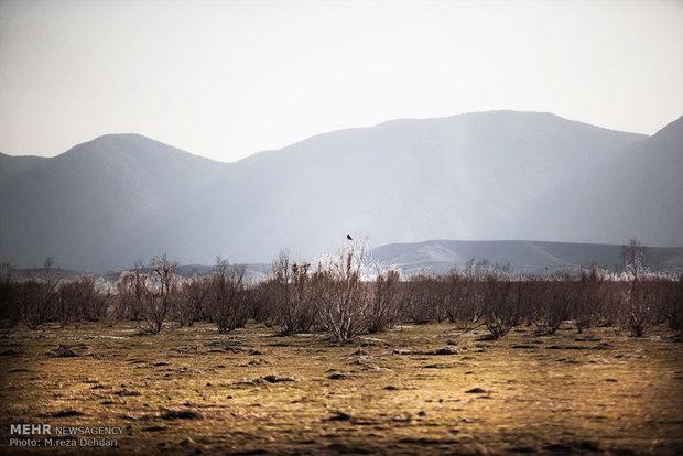 دریاچه های فارس همچنان خشک