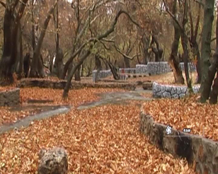 پاییز برگریزان در سده اقلید