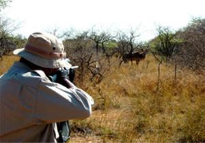شکارچیان متخلف در دام قانون