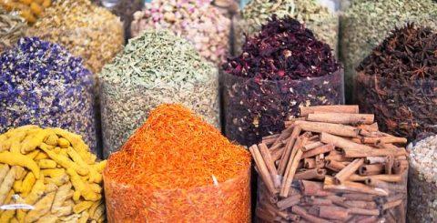 افزایش برداشت گیاهان دارویی در فارس+فیلم