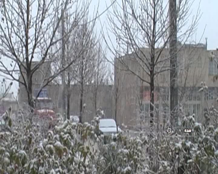 بارش نخستین برف زمستانی در سده+فیلم