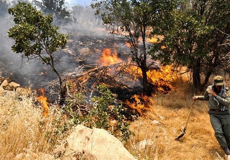 مهار کامل آتش سوزی مراتع دژکرد اقلید