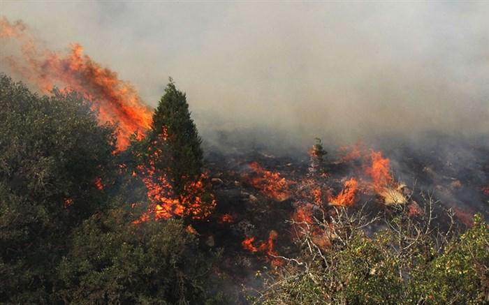 مهار آتش سوزی منابع طبیعی در شهرستان اقلید