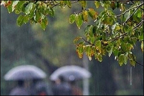 جزییات بارش های اخیر فارس/ اردکان و اقلید رکورددار هستند