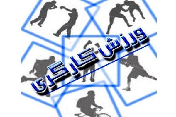 فارس در جایگاه دوم ورزش کارگری کشور قرار گرفت
