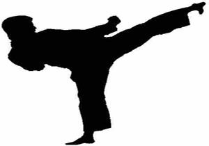 درخشش ورزشکاران فارسی در مسابقات بینالمللی کاراته