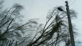 وزش باد شدید در فارس
